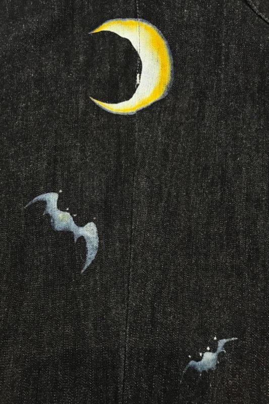 【月夜のコウモリ】