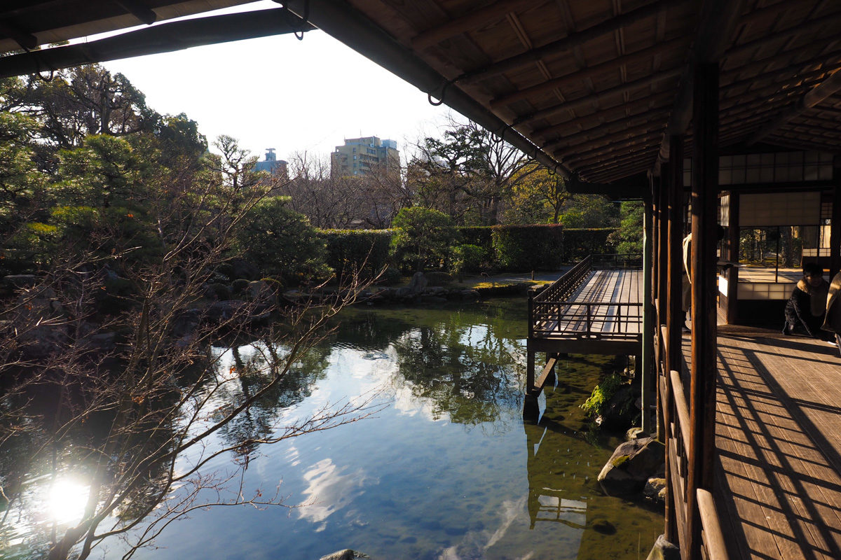 東本願寺池2